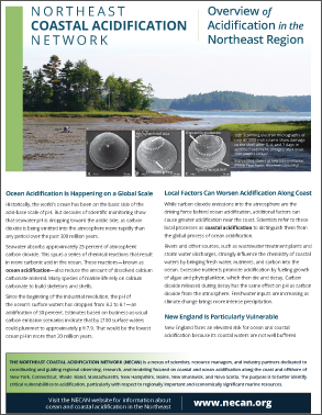 Overview of Coastal Acidification in the Northeast Region